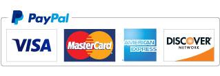 Pay pal visa logo
